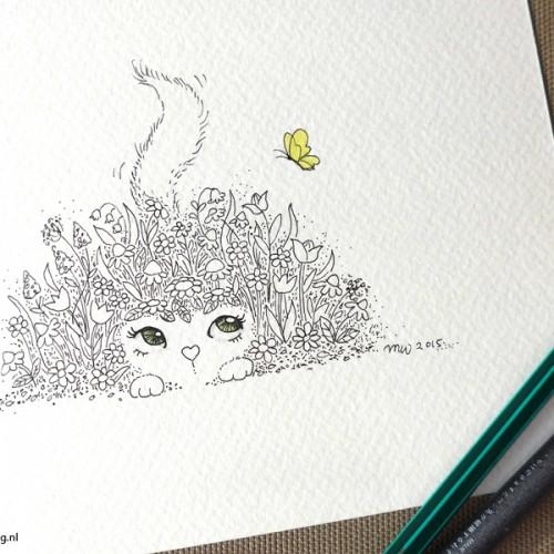 007-Flower cat-photo-small