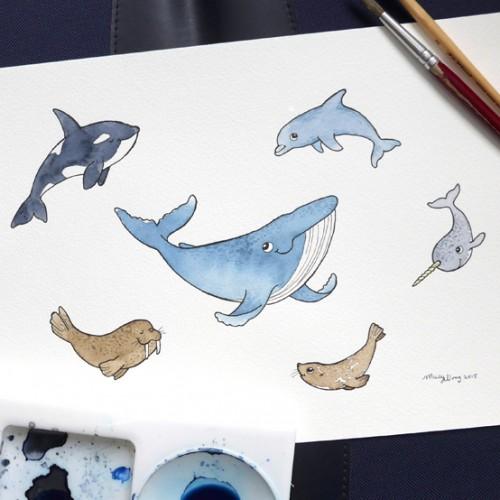 009-Sea mammals-photo-small