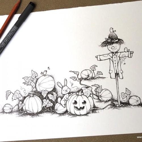 055-Pumpkin field-photo-small