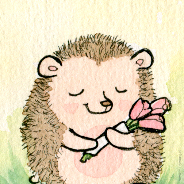 Spring hedgehogs